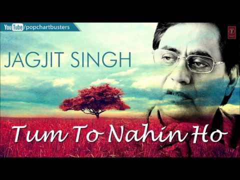 "Jagjit Singh Ghazal ""Wo Nahin Mila"" | Tum To Nahin Ho Album | Best Of Jagjit Singh Ghazals"