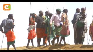 VIDEO: Police arrest 379 armed illegal grazers in Laikipia County