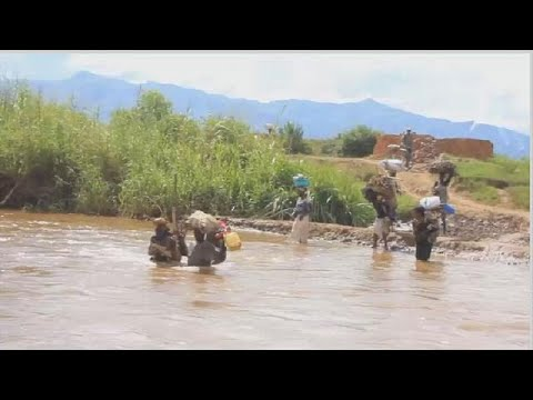 RDC : le calvaire des riziculteurs de Luvungi