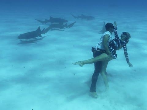 Dancing with Sharks: Shark Couple: Ocean Ramsey & JuanSharks