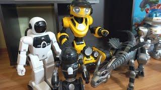 Видео про роботов для детей. Мультики с игрушками(В этом видео мы увидим небольшую коллекцию роботов для детей. Роботы здесь разные, большие и маленькие,..., 2016-01-13T18:46:12.000Z)