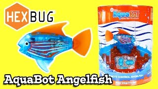 HexBug Aquabot Angelfish Remote Controlled Fish Review