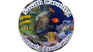 South Carolina Aquatics Association 2016 Swap Meet