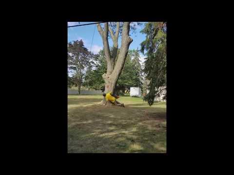Huge Locust Tree Falls On Garage And Fence