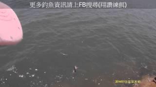 翔讚練餌-釣魚實況001錄影-7/15-10:30~14:00(鹿北黑格)