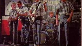 The Beach Boys- Why Do Fools Fall in Love