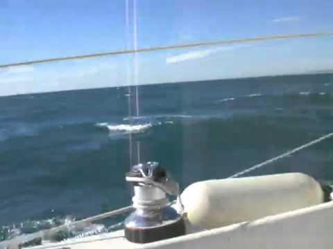 sailing  in the mediterranean sea