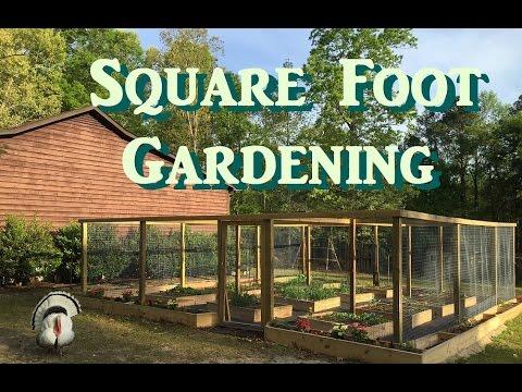 Square Foot Garden at Little Baby Farm - Organic Garden Update 4/19/16