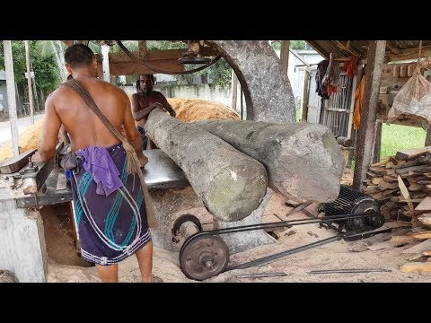 New Sawmill With Black Fighters।Undress Black Wood Cutting Workers Cutting Wet Black Wood at Village