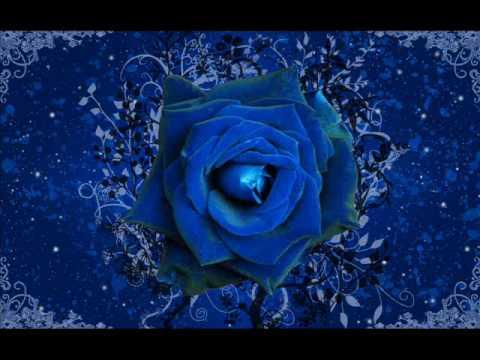 Blue Rose - Don't You Know (Rockklassiker)