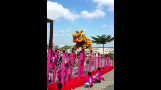 Lion dance CNY 2015 at Horizon hills