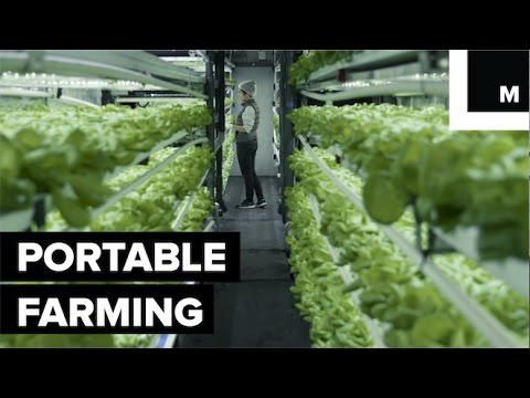 how-a-company-fits-five-acres-of-farmland-into-shipping-containers