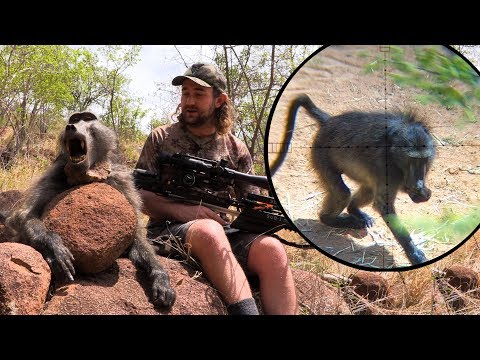 Baboon Hunt with a Crossbow - Mission SUB-1