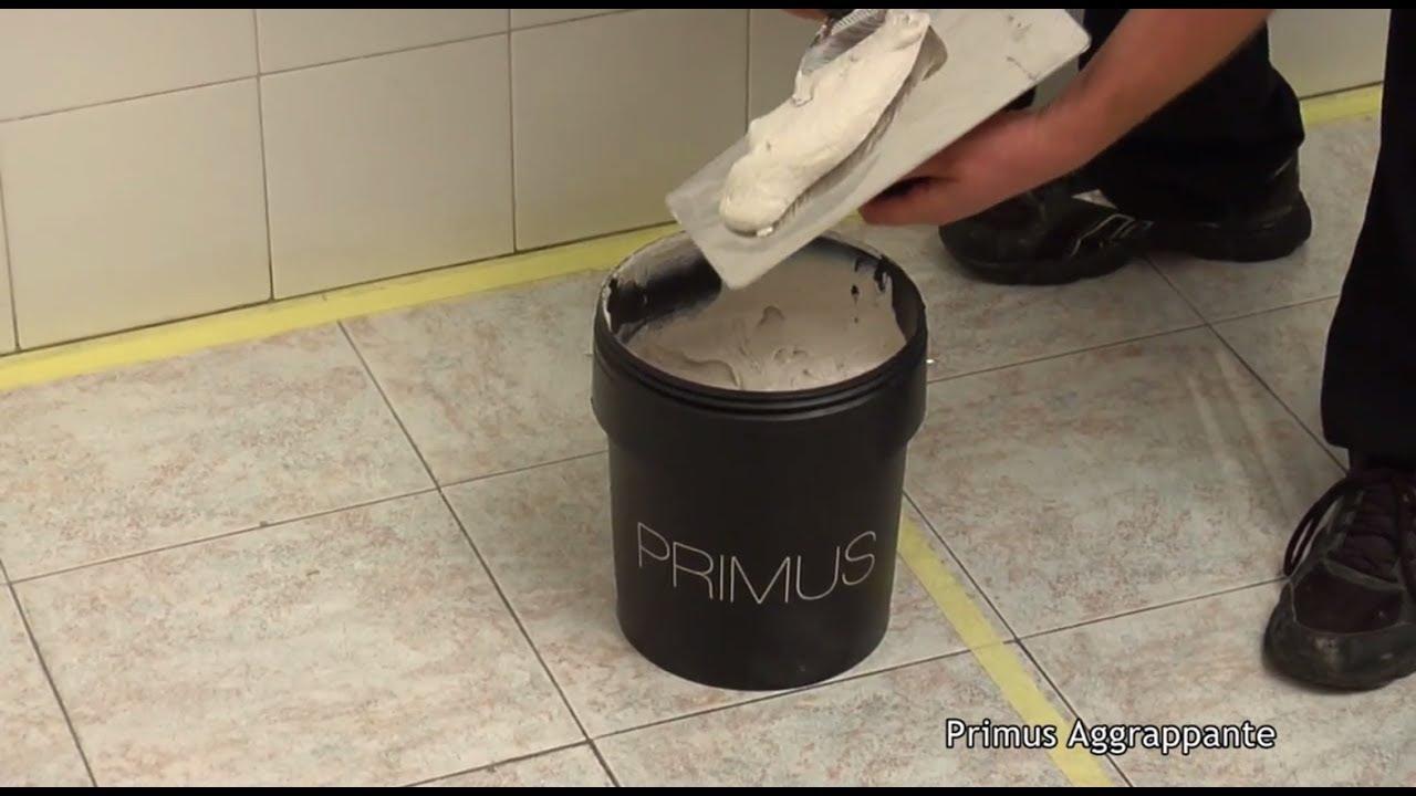 Primus aggrappante profitec youtube
