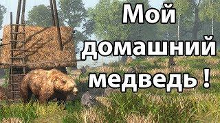 Мой домашний медведь ! ( Life is Feudal: Forest Village )