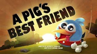Злые птички - Энгри Бердс - Лучший друг свина (S1E38) || Angry Birds Toons