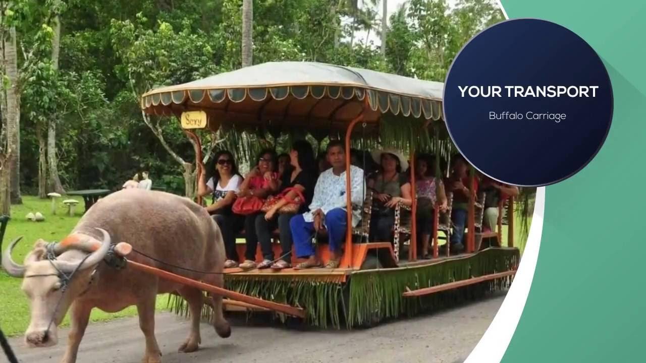 Villa Escudero Philippines Villa Escudero Day Tour  Philippines  Youtube