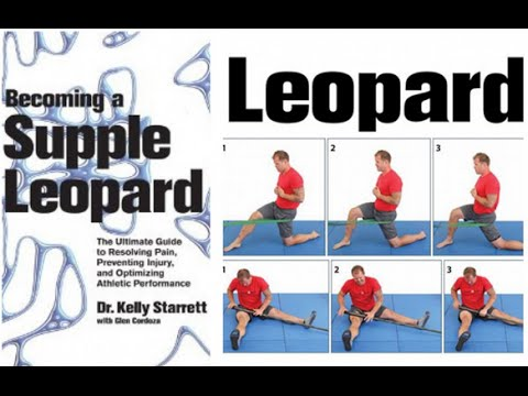 Becoming a Supple Leopard | Feat. Dr Kelly Starrett + Glen Cordoza | MobilityWOD