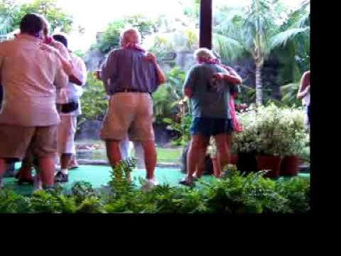 Hawaii 2004 100 0240