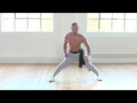 The 5 Fundamental Shaolin Stances - Qigong and Kung Fu