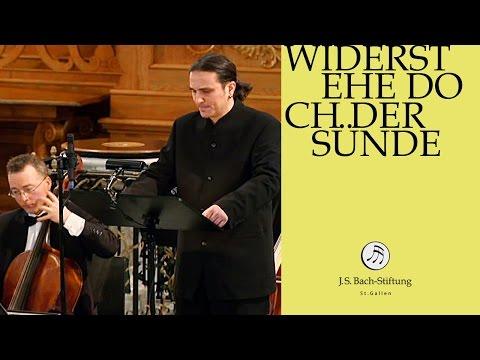 J.S. Bach - Cantata BWV 54 Widerstehe doch der Sünde | 3 Aria (J. S. Bach Foundation)