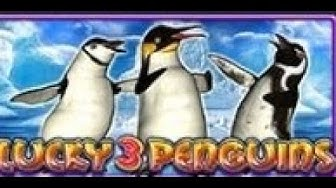 Lucky 3 Penguins - Slot Machine
