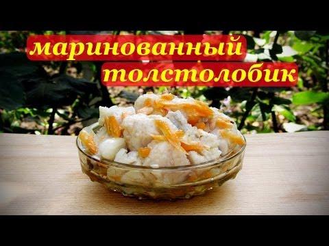 Рецепты рыбных блюд Вкусные рецепты с фото