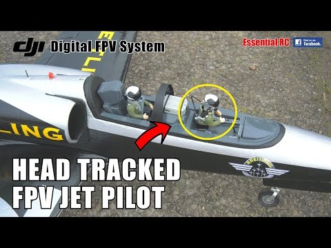 RC JET PILOTING FROM THE COCKPIT !!! FREEWING L-39 DJI DIGITAL FPV WITH HEAD TRACKING | PILOT: GUI