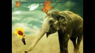 Peponi Lyrics- Coldplay-Paradise.Piona Guys ft.Alex Boye