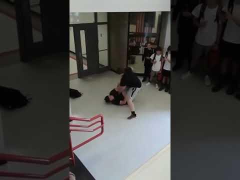 cat fight jacob hopkins