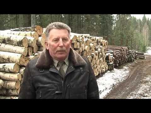 Nadleśnictwo Gołdap - Puszcza Romincka