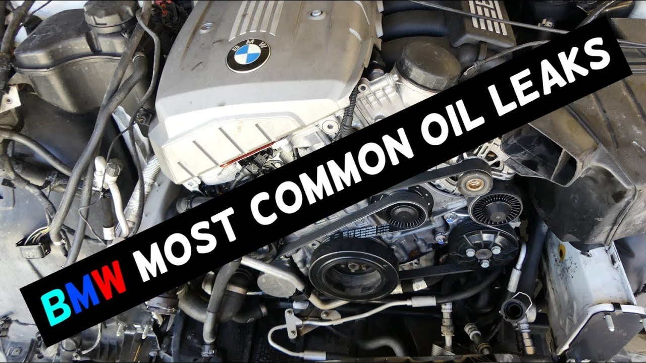 BMW MOST COMMON OIL LEAK LEAKS YouTube