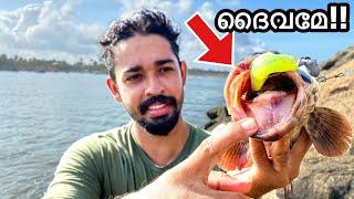 💥ചൂണ്ടയിൽ പിടിച്ച മീനിന്റെ വായിൽ നിറയെ.... | Fish With Super Sharp Teeth | grouper fishing Kerala