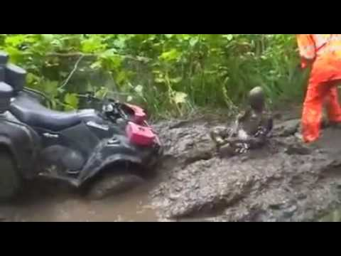 head first in the mud hole