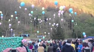 Ballonnenwedstrijd camping kautenbach