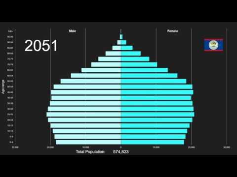 Belize Population Pyramid 1950-2100