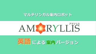 マルチリンガル案内ロボット「AMARYLLIS」紹介_英語バージョン