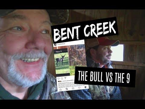 BENT CREEK LODGE THE BULL VS THE 9