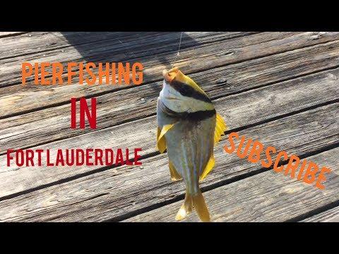 PIER FISHING IN FORT LAUDERDALE FLORIDA