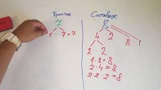 Простые и составные числа. Математика 6