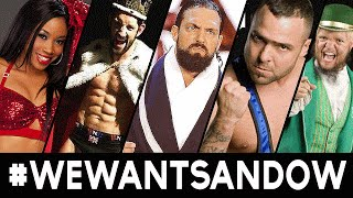 5 wrestlers who were released from the wwe 2016