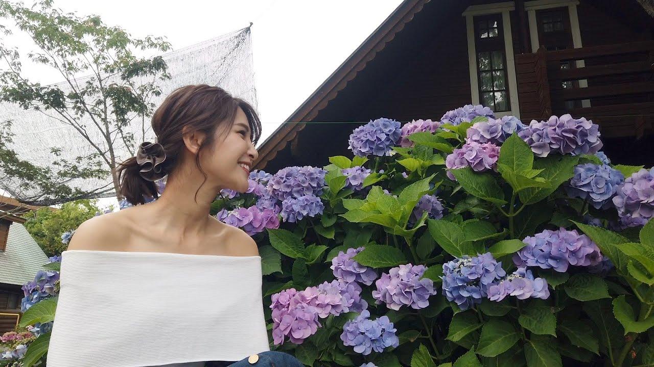 【舞洲ロッジ】インスタ映えの紫陽花スポットへ【大阪リゾート】