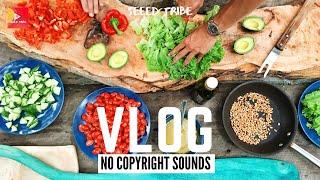 Kitchen Fan-1  [Vlog No Copyright Music] | Sound
