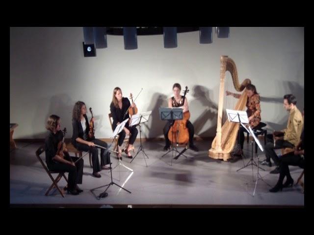 Introduction et Allegro - Maurice Ravel - Kammerensemble Le Pli