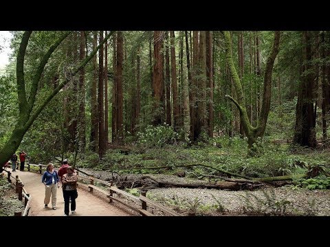 Wow! Top 20 Best Places to Visit in California 2018
