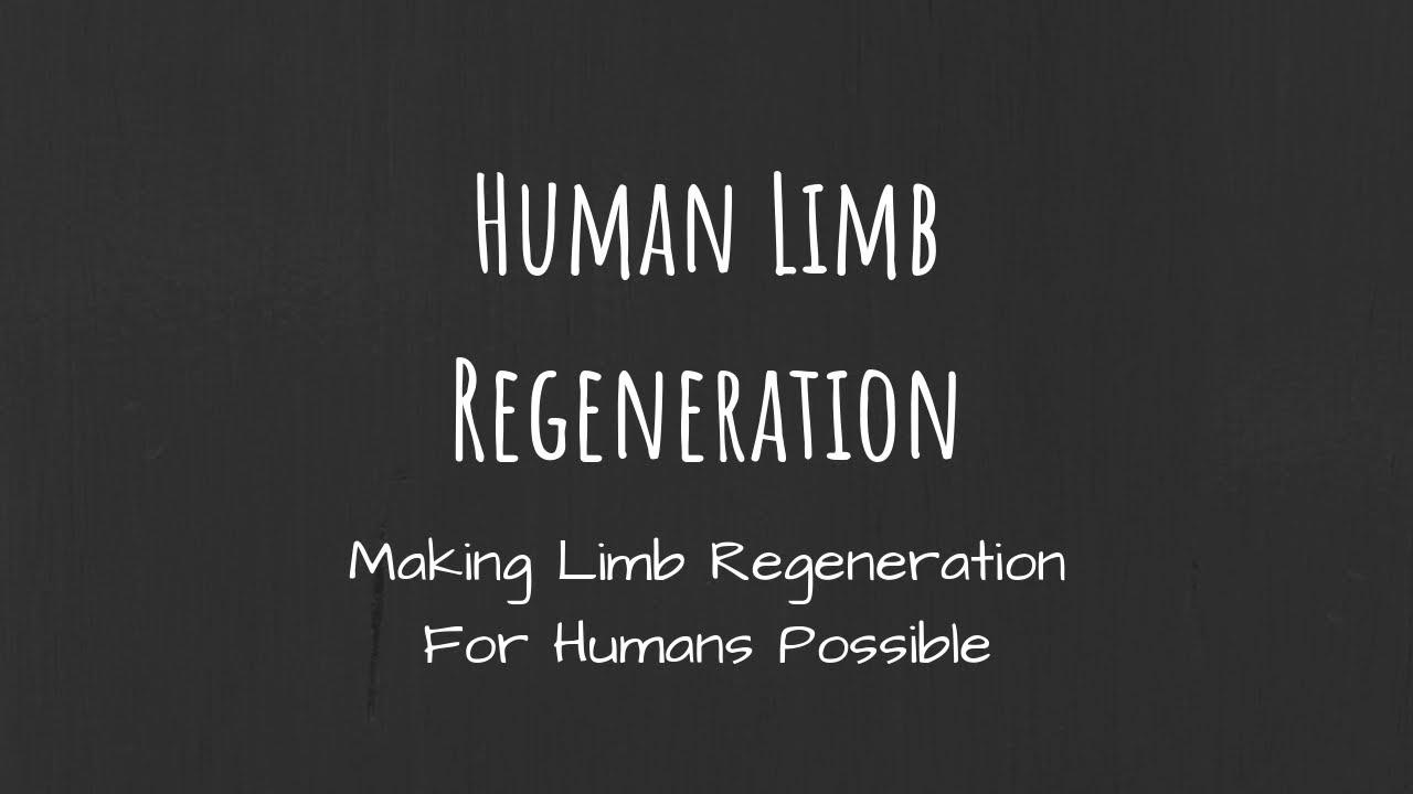 Human Limb Regeneration