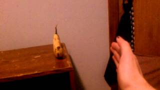Telekinesis going bananas...