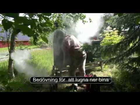 Ivar Myrli Biodlaren i Grinnemo