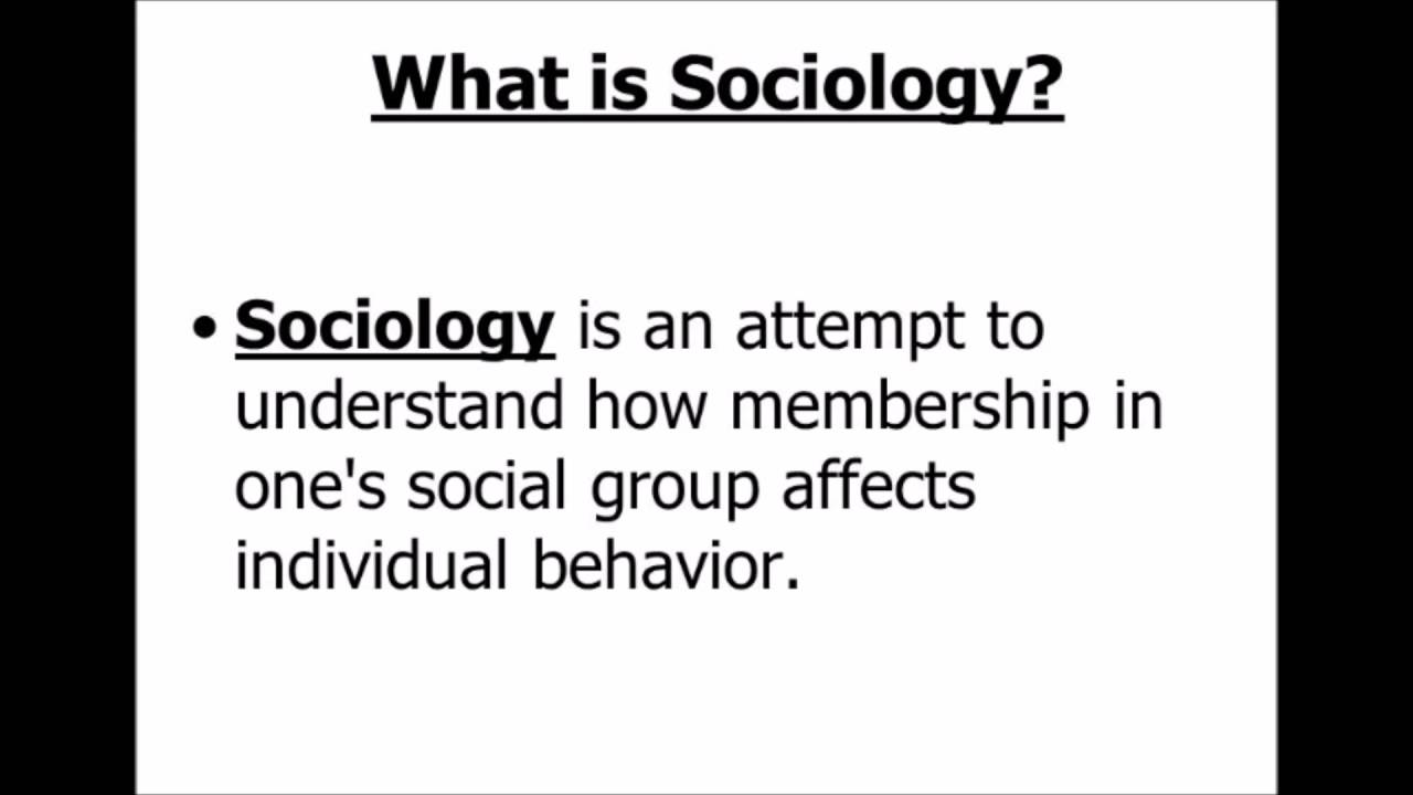 What is sociology 35