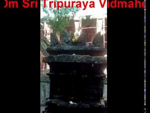 Tulasi Mantra - Tulasi Gayatri